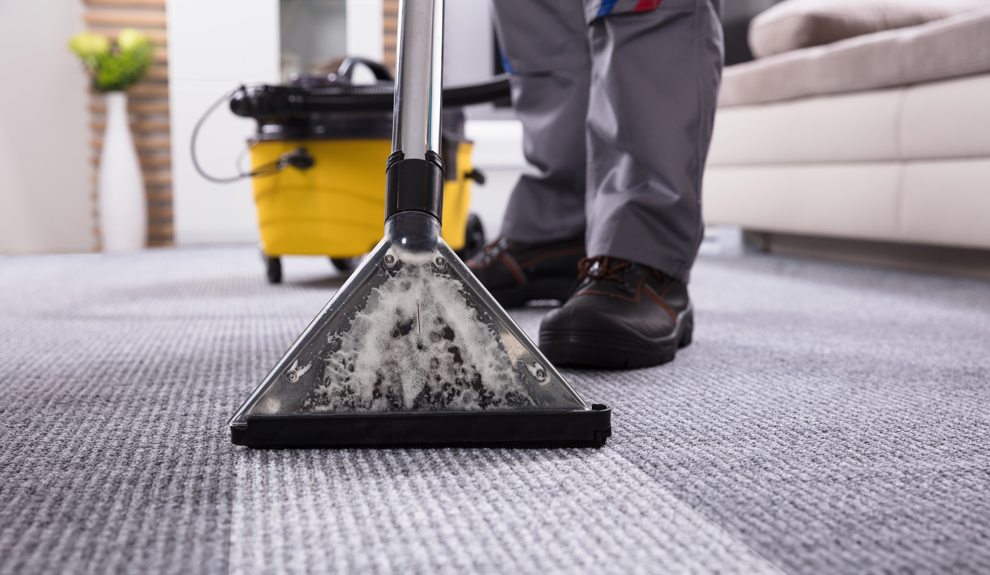carpet cleaning mob